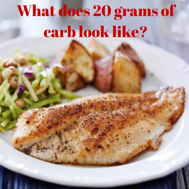 What does 20gm carb look like?