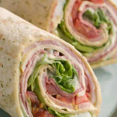 low carb tortilla wrap with turkey and tomatoes