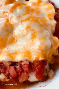 closeup of chicken breast covered in salsa and melted cheese