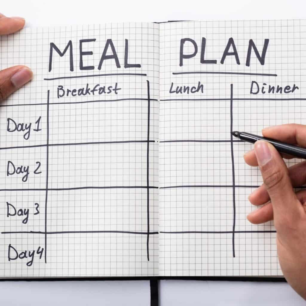 open book titled meal plan with hand holding pen
