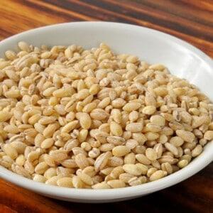 barley grain in white bowl