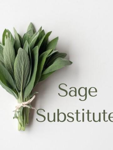 bundle of sage with sage substitutes