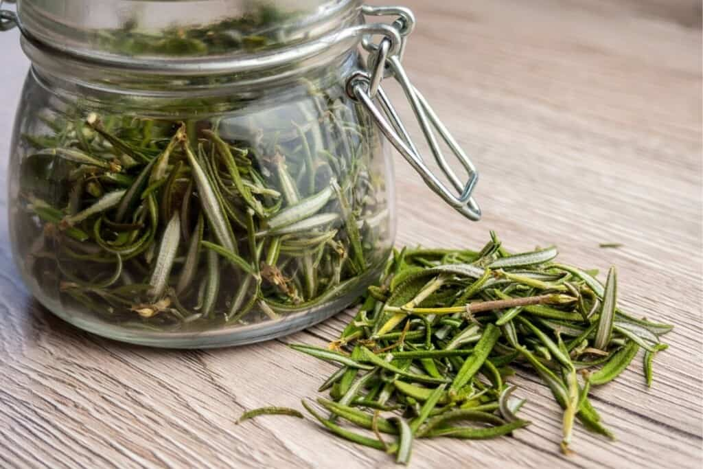 dried rosemary herb in glass jar and scattered on wooden table